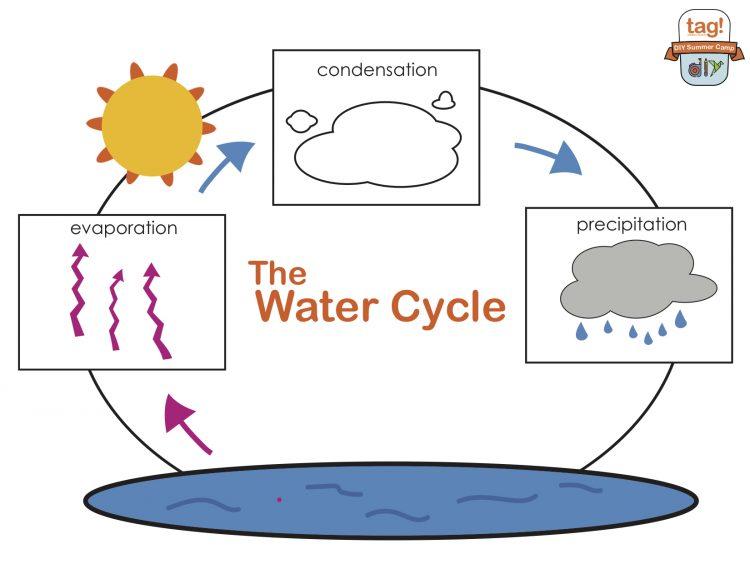 tag_DIY_Water Cycle